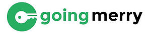 Image result for going merry logo