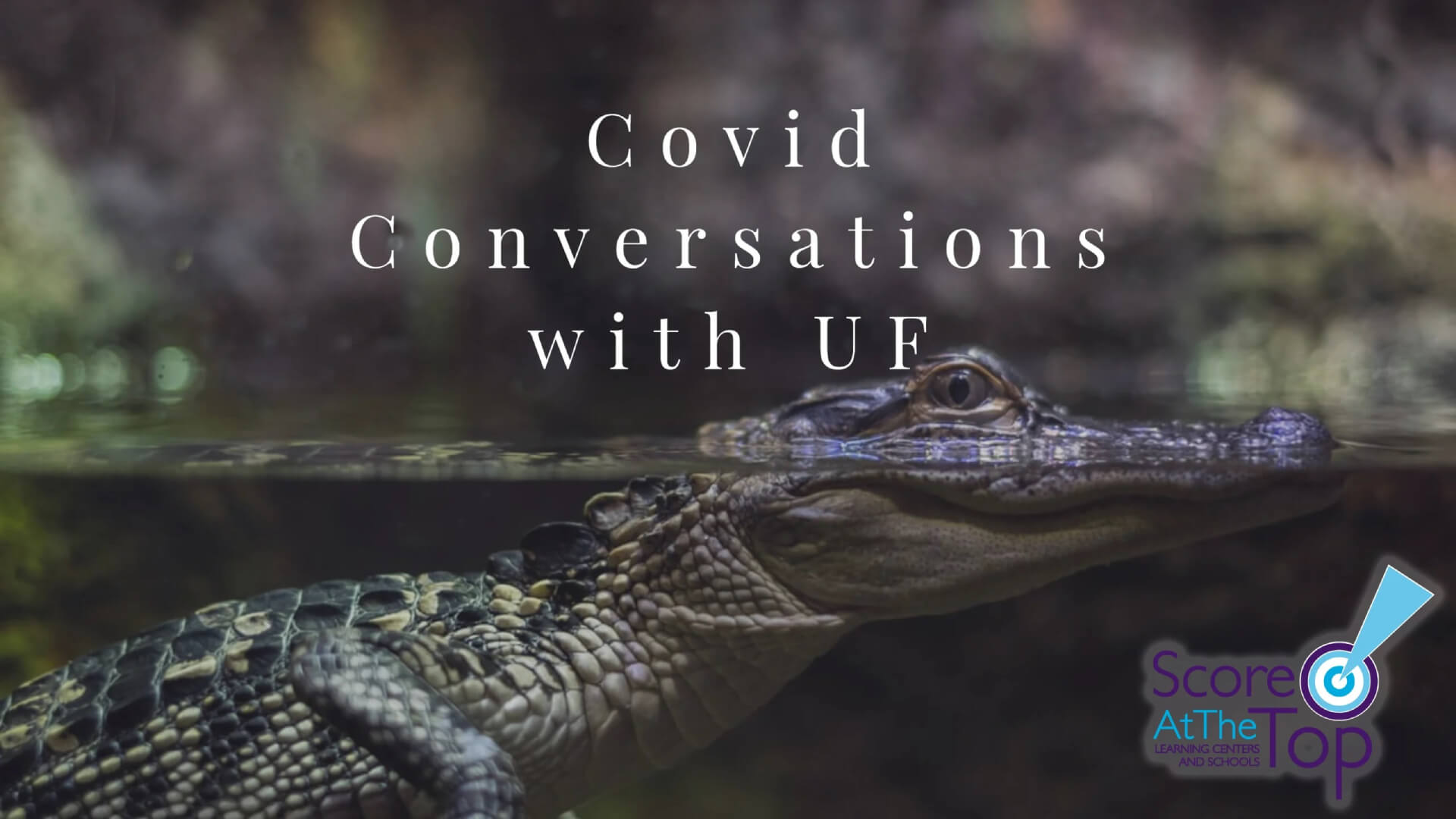 UF admissions information during Covid-19